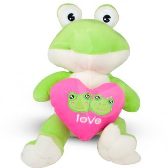 Love Froggy Tedddy Bear with Zoomed in View