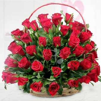 Combination of 100 lovely red roses