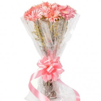 10 Pink Gerberas Bouquet in Beautiful Packaging