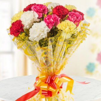 Colourful Smiles Bunch of 10 Mixed color Carnation Gift for Him