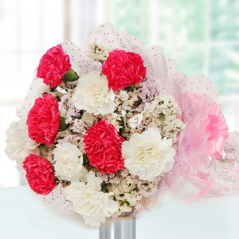 10 Pink and White Carnations in Horizontal View