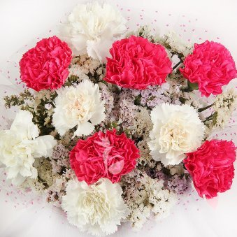10 Pink and White Carnations with Top View