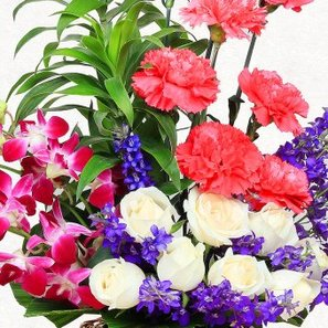8 Pink Carnations 8 White Roses and 4 Purple Orchids with Zoomed View