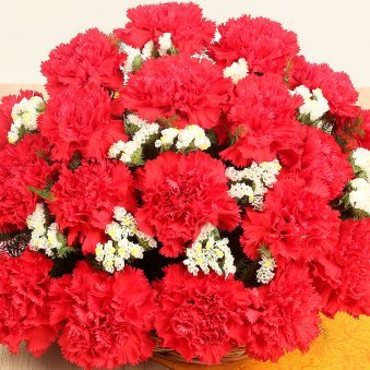 30 Red Carnations in Zoomed View