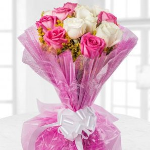 12 Pink and White Roses