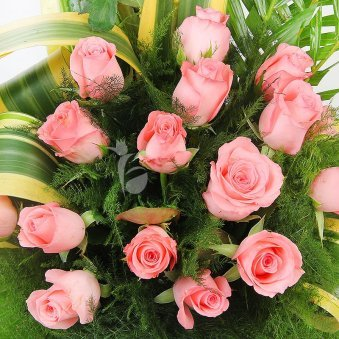 Top view of 20 pink rose arrangement - A gift of Beary Love