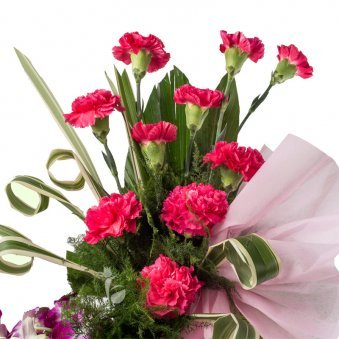 20 Purple Orchids and 10 Pink Carnations in Zoomed View
