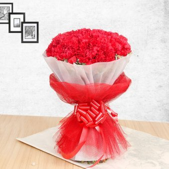 20 Red Carnations in Front View