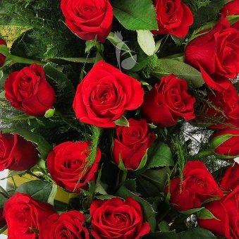Long Arrangement of 150 Red Roses in Zoomed in View