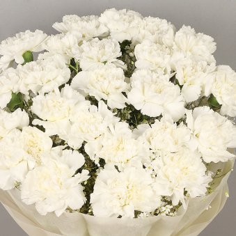 20 White Carnations Bunch with Zoomed View