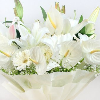12 Mixed White Blooms with Zoomed in View