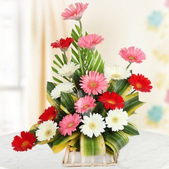 18 mixed colored Gerberas
