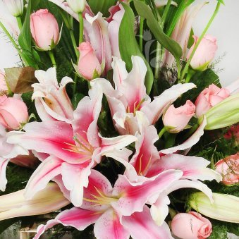 An arrangement of 4 Pink Lilies and 12 Pink Roses with Top View