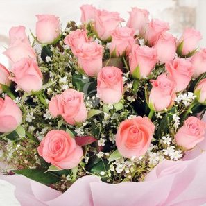 Beautiful Bunch of 25 Pink Roses with Zoomed View