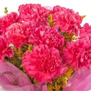 10 Pink Carnations with Top View