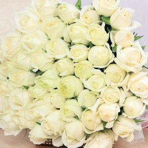 Bunch of 40 White Roses with Top View