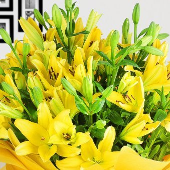 12 Yellow Lilies Bunch Zoomed View