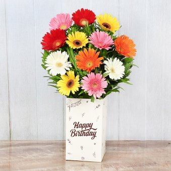 Mixed Color Gerberas in Birthday Box