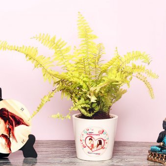 Boston Fern Plant in a Personalised Anniversary Vase