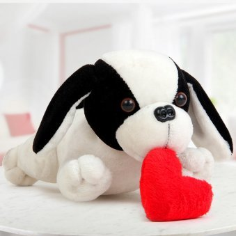 A 10 inch puppy that is holding a heart