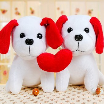 A Puppy Teddy with Heart