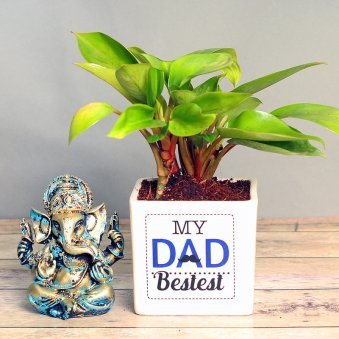 Red Philodendron Plant and God Idol Combo for Dad