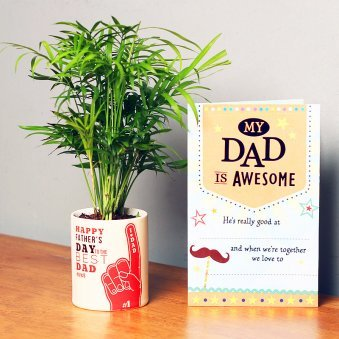Fathers Day Combo of Chamaedorea Plant and Card