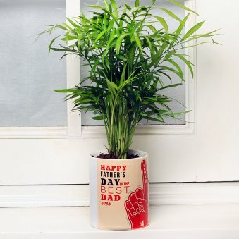 Chamaedorea Plant in Happy Fathers Day Printed Vase