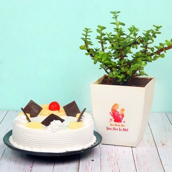 Jade Plant with Pineapple Cake Combo for Mom