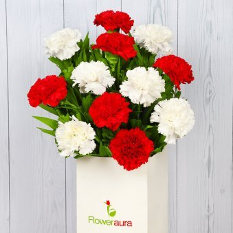 Bunch of 12 Mixed Carnations in Closed View