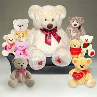 Combo of Nine Teddies