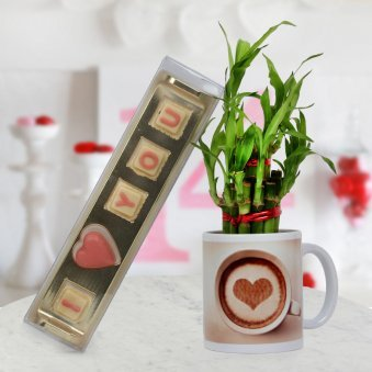 A pack of handmade chocolates with Coffee Mug and Bamboo Plant