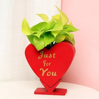 Golden Money Plant in Heart Shaped Vase