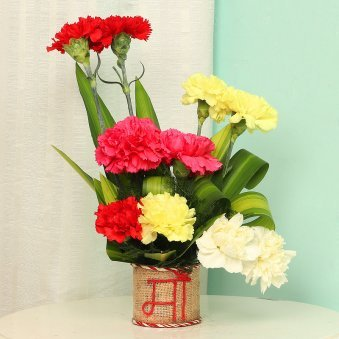 Bunch of Mixed Carnations for Mom