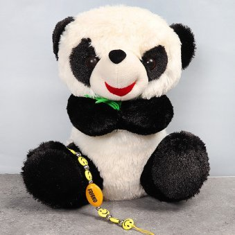 Panda and Friendship Band Combo