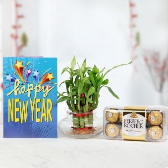 A cool New Year Greeting Card, A Bamboo Plant for Good Luck and a pack of Ferrero Rochers to add sweetness to the occasion