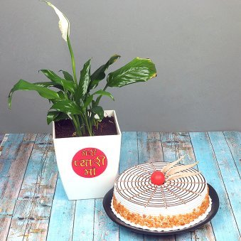 Peace Lily Plant with Buterscotch Cake Combo for Mom