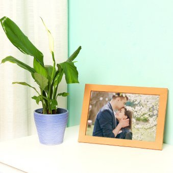 Peace Lily Plant with Personalised Photo Frame