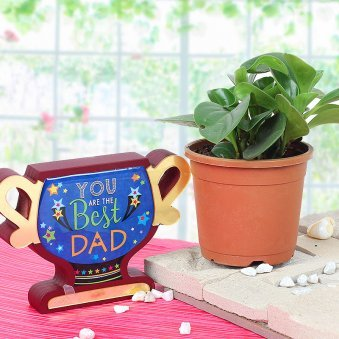 Combo of Peperomia and You Are The Best Dad Trophy