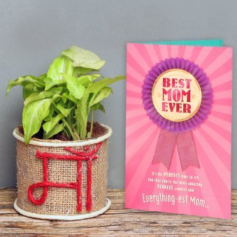 Syngonium Plant and a Card Combo for Mom