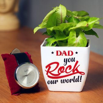 Golden Syngonium Plant and Watch Combo for Dad