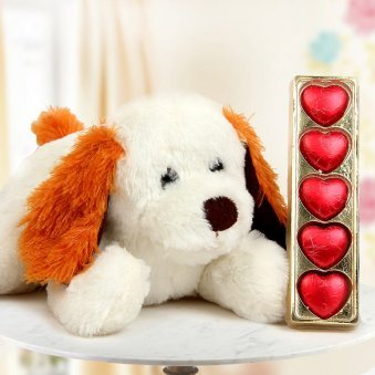A 15 Inch Puppy Teddy and A Pack of Five Heart-shaped Handmade Chocolate