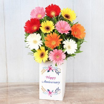 Mixed Color Gerberas in Anniversary Box
