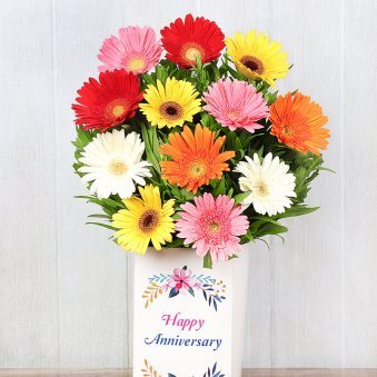 Mixed Color Gerberas in Anniversary Box in Zoomed View