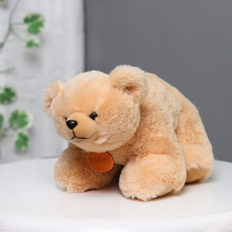 A Brown Teddy Bear